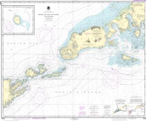 thumbnail for chart Unimak and Akutan Passes and approaches;Amak Island